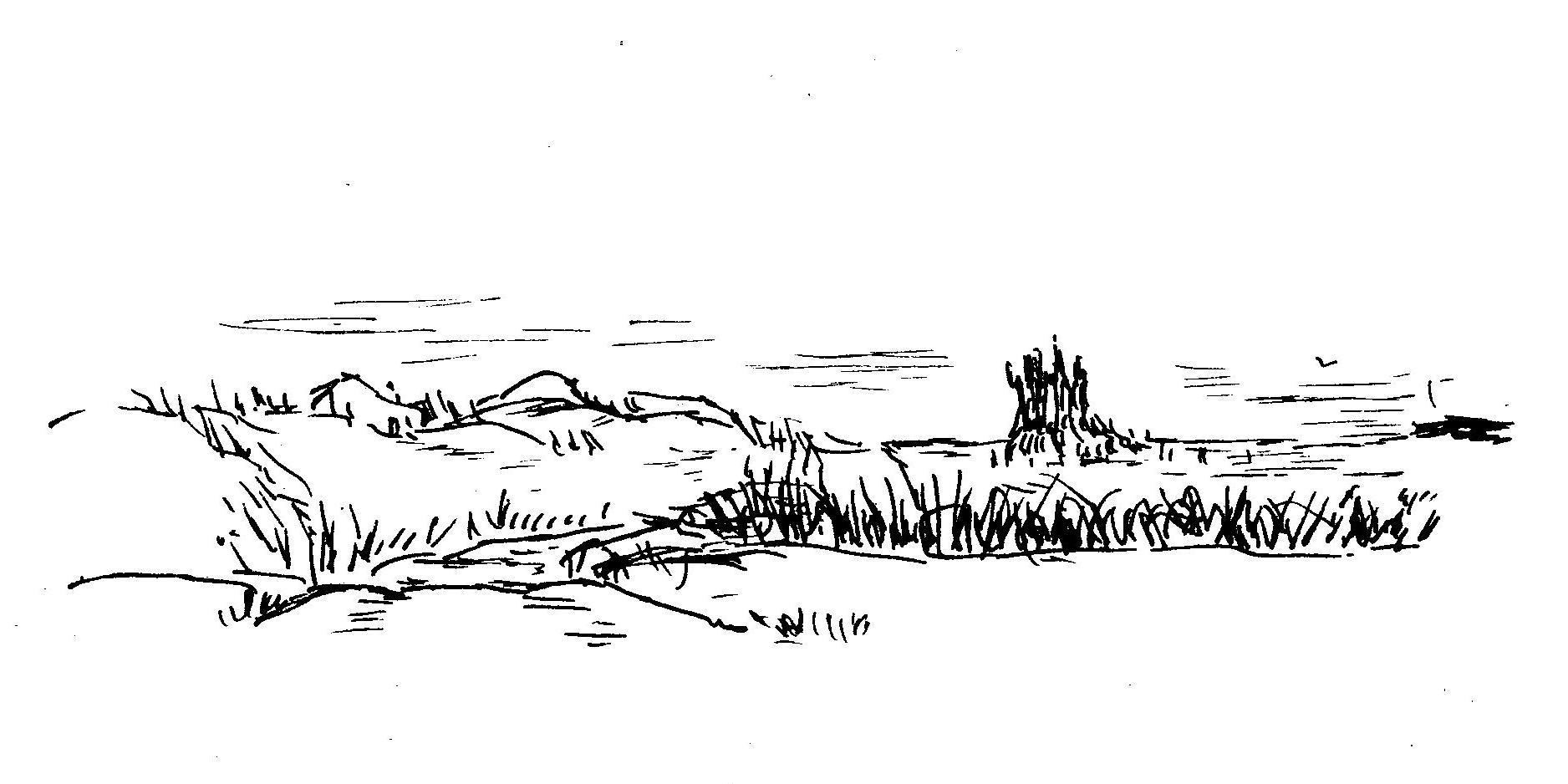 coast-road-to-marsh